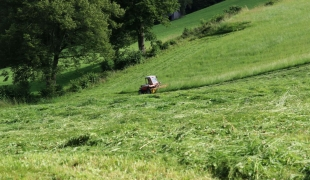 Bauer beim mähen der Wiese